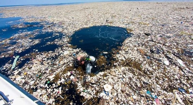 Море пластикового мусора